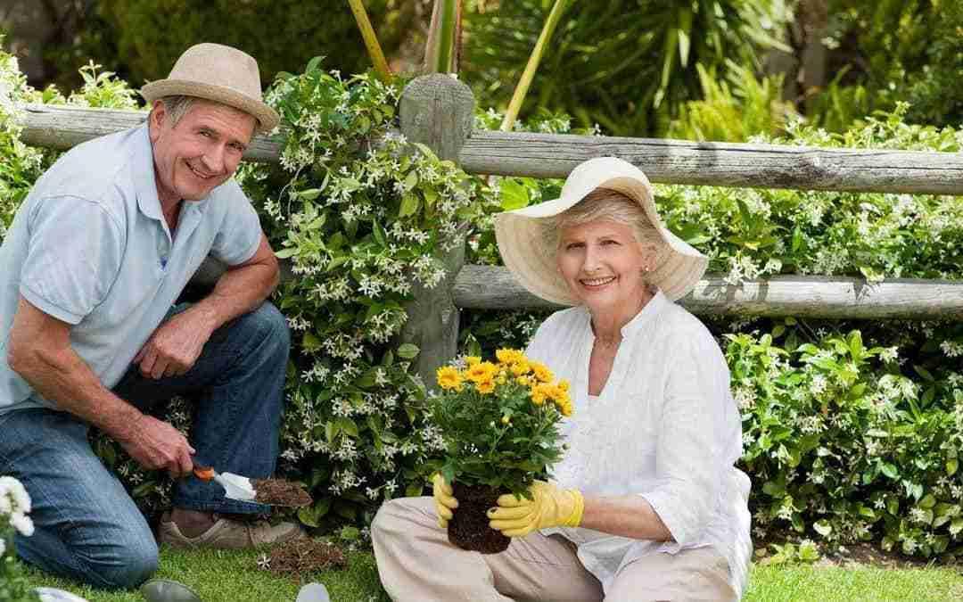 How Gardens Help you Rock Your Retirement