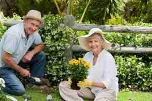 How Gardens Help you Rock Your Retirement