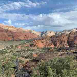 Barbara Mock's Retirement Journey to Snow Canyon and Angel Bird